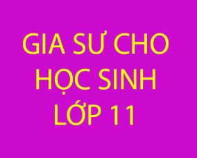 Gia sư dạy kèm cho học sinh mất gốc lớp 11 tại Hà Nội